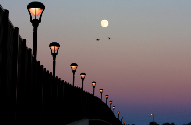 Canada geese fly by a full moon while shooting a photo for bridge construction story.